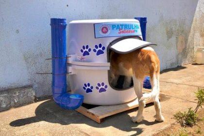 """Abrigos para """"Cachorros de Rua"""" são instalados em vias públicas de Vitória da Conquista"""